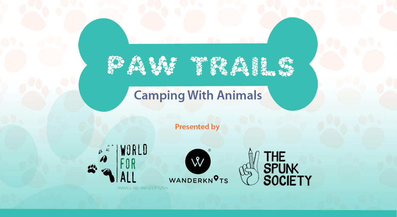 background-image-paw-trails-2018-2019-times-prime